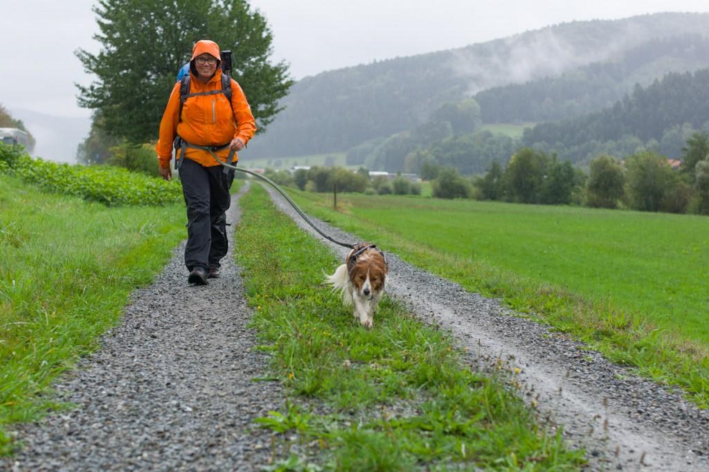 Schwarzwald-2